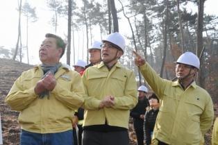 [포토] 박종호 산림청장, 태안군 소나무재선충병 방제 현장 점검