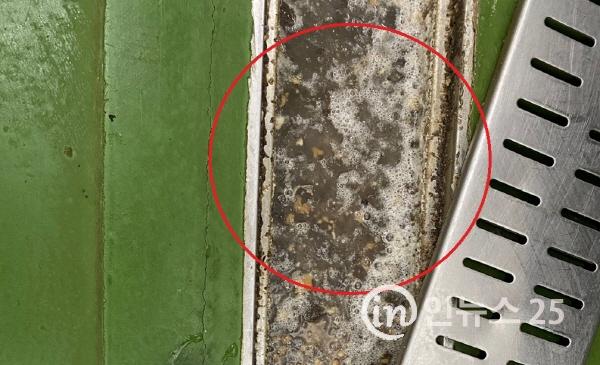 던킨도너츠 4개 제조업체 식품 위생불량 취급기준 위반